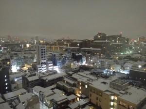 2016-1-18 東京初積雪8